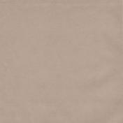 Winter Fun- Solid Tan Paper