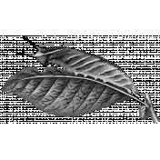 Leaf Template 109