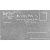 Postcard Template 008