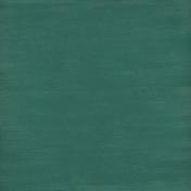 Winter Day- Dark Green Solid Paper