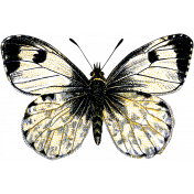 Spring Day- Black and White Butterfly