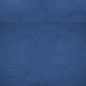 Spring Day- Navy Blue Paper