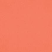 Spring Day- Orange Solid Paper