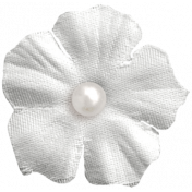 Raindrops & Rainbows- White Flower