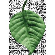 Independence Mini Kit 2- Leaf