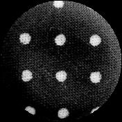 Button Template 381