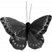 Butterfly Template 065