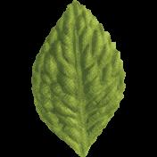 Slice of Summer- Green Leaf