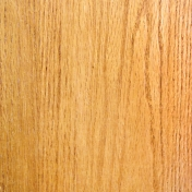 Digital Day - Wood Paper