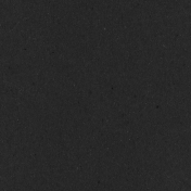 Digital Day- Black Solid Paper