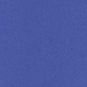 Digital Day- Blue Solid Paper