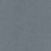 Digital Day- Dark Gray Solid Paper