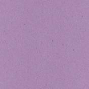 Digital Day- Light Purple Solid Paper