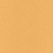 Digital Day- Orange Solid Paper
