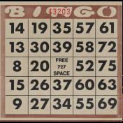 At the Zoo- Bingo Card