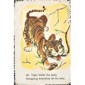At the Zoo- Tiger Card Ephemera