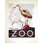 At the Zoo- Heron Ephemera