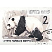 At the Zoo- Panda Ephemera