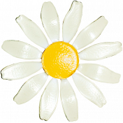 At the Zoo- White Enamel Daisy Pin