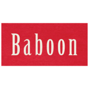 At the Zoo- Baboon Word Art