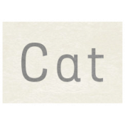 At the Zoo- Cat Word Art