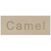 At the Zoo- Camel Word Art