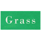 At the Zoo- Grass Word Art