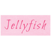 At the Zoo- Jellyfish Word Art