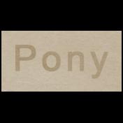 At the Zoo- Pony Word Art