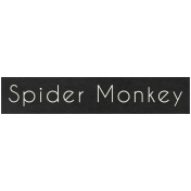 At the Zoo- Spider Monkey Word Art