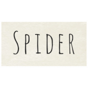 At the Zoo- Spider Word Art