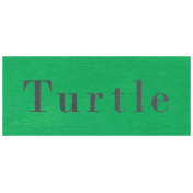 At the Zoo- Turtle Word Art