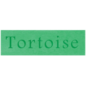 At the Zoo- Tortoise Word Art