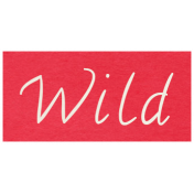 At the Zoo- Wild Word Art