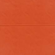 Pumpkin Spice- Orange Bag Paper