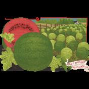 Slice Of Summer- Watermelon Chalk 13