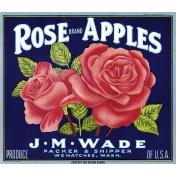 Apple Crisp - Apple Label