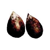 Apple Crisp- Apple Seeds
