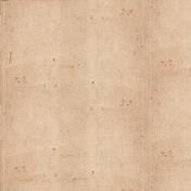 Apple Crisp- Tan Creased Paper