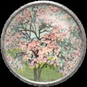 Apple Crisp- Apple Blossom Brad 07