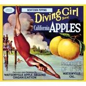 Apple Crisp- Apple Label Ephemera 04