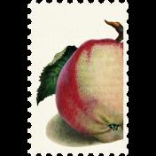 Apple Crisp- Postage Stamp 023