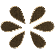 Apple Crisp- Seeds Doodle