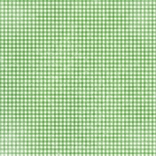 Apple Crisp- Green Gingham Paper