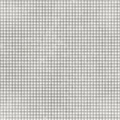 Apple Crisp- Gray Gingham Paper