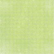 Apple Crisp- Lime Green Gingham Paper