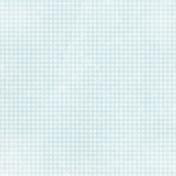 Apple Crisp- Light Blue Gingham Paper