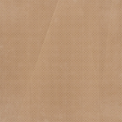 Apple Crisp- Light Brown Dots Paper