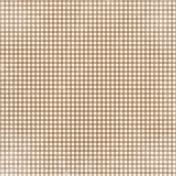 Apple Crisp- Light Brown Gingham Paper