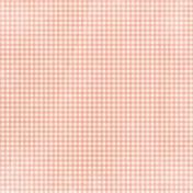 Apple Crisp- Light Pink Gingham Paper